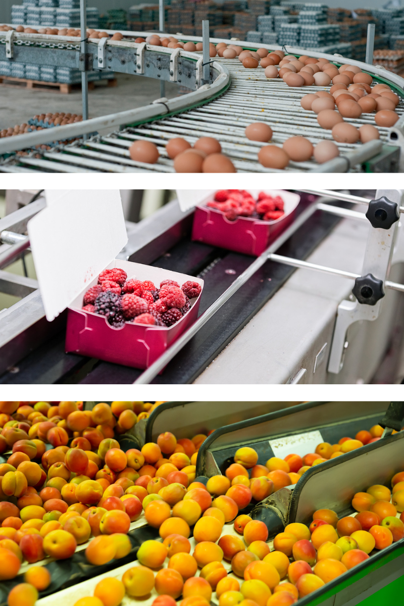 Quality, Compliance, and Production Software for the Food & Beverage Industry
